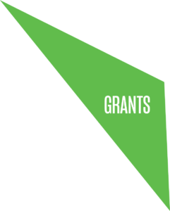 BIRFAsset Grants (1)